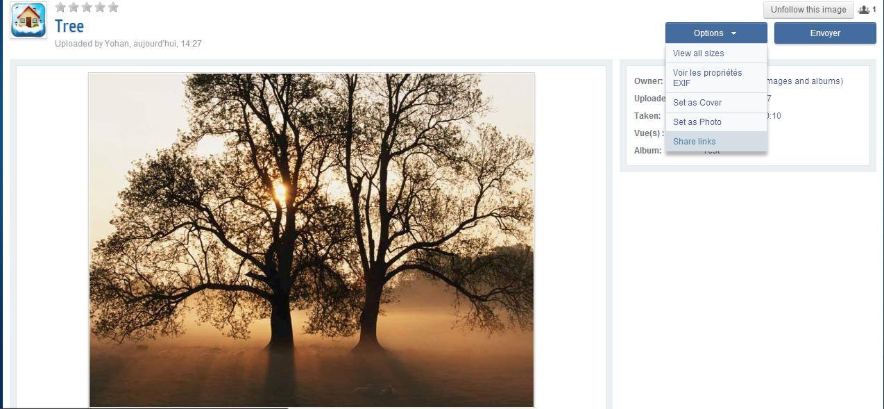 gallery_1_9_105088.jpg